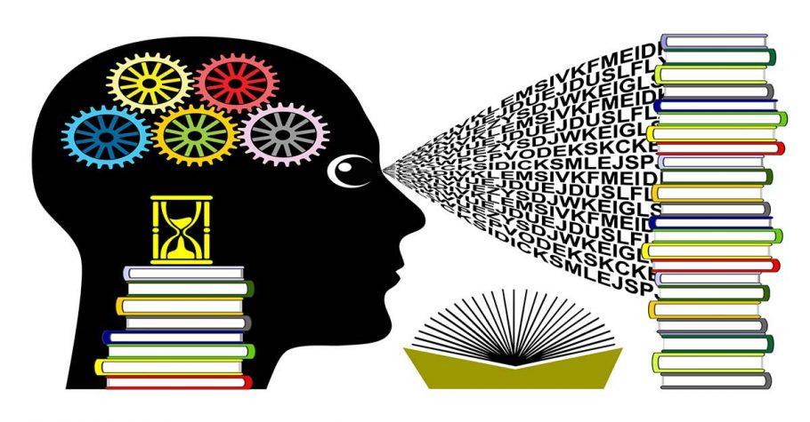 Anlayarak Hızlı Okuma Teknikleri Eğitimi Kursu